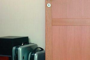Medinės vidaus durys
